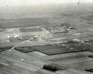 Droglandts 1917